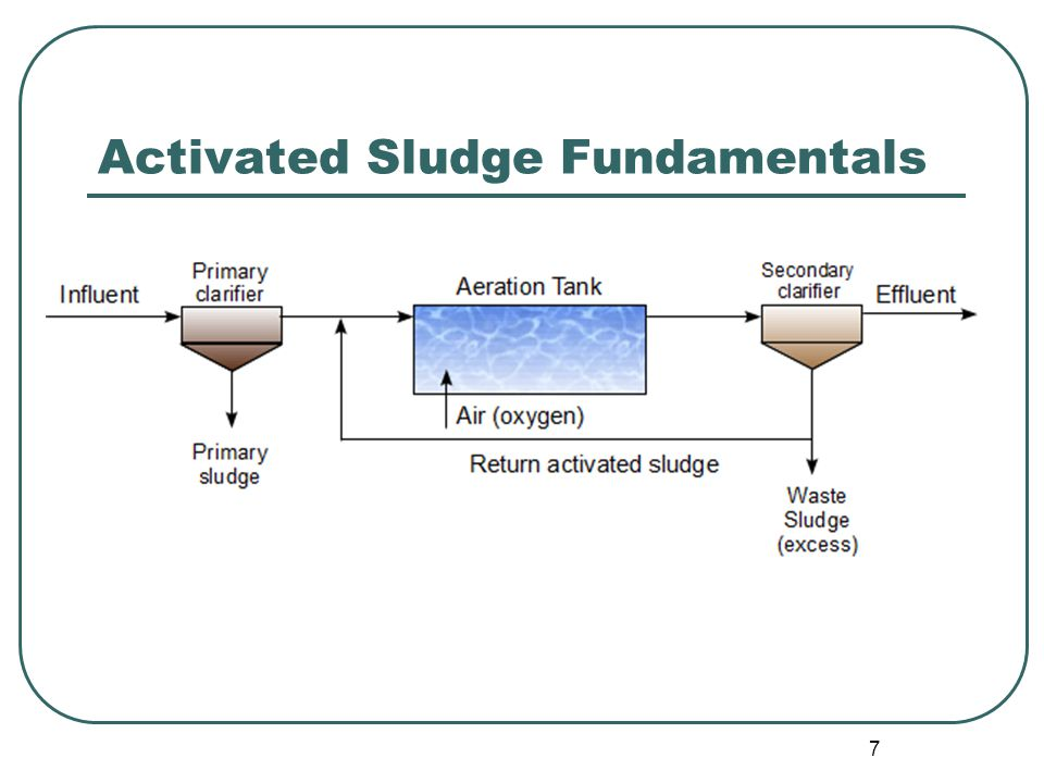 7 Activated Sludge Fundamentals