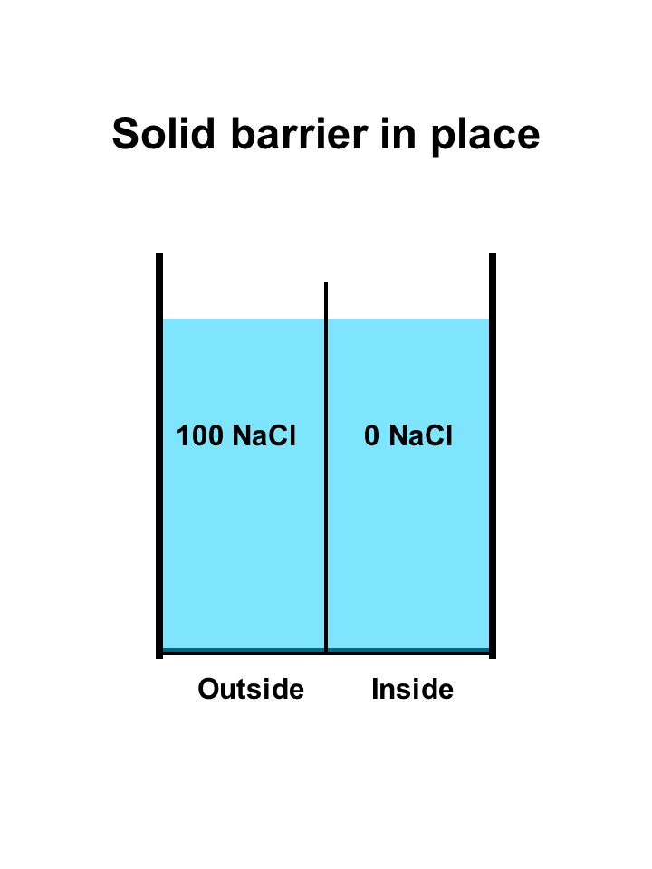 100 NaCl Solid barrier in place 0 NaCl OutsideInside