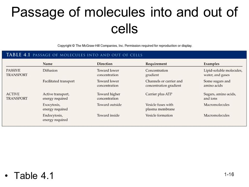 1-16 Passage of molecules into and out of cells Table 4.1