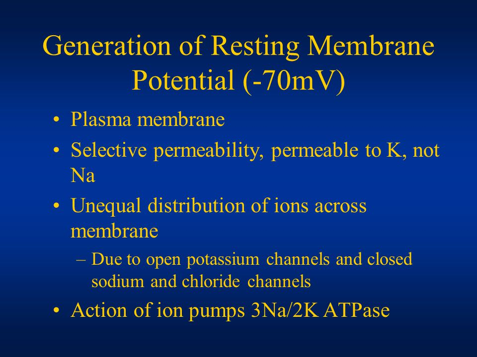 Generation of Resting Membrane Potential (-70mV) Plasma membrane Selective permeability, permeable to K, not Na Unequal distribution of ions across membrane –Due to open potassium channels and closed sodium and chloride channels Action of ion pumps 3Na/2K ATPase