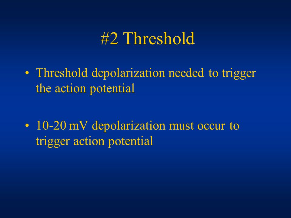 #2 Threshold Threshold depolarization needed to trigger the action potential mV depolarization must occur to trigger action potential