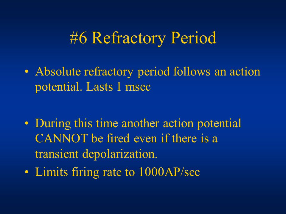 #6 Refractory Period Absolute refractory period follows an action potential.