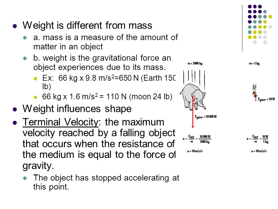 Weight is different from mass a. mass is a measure of the amount of matter in an object b.