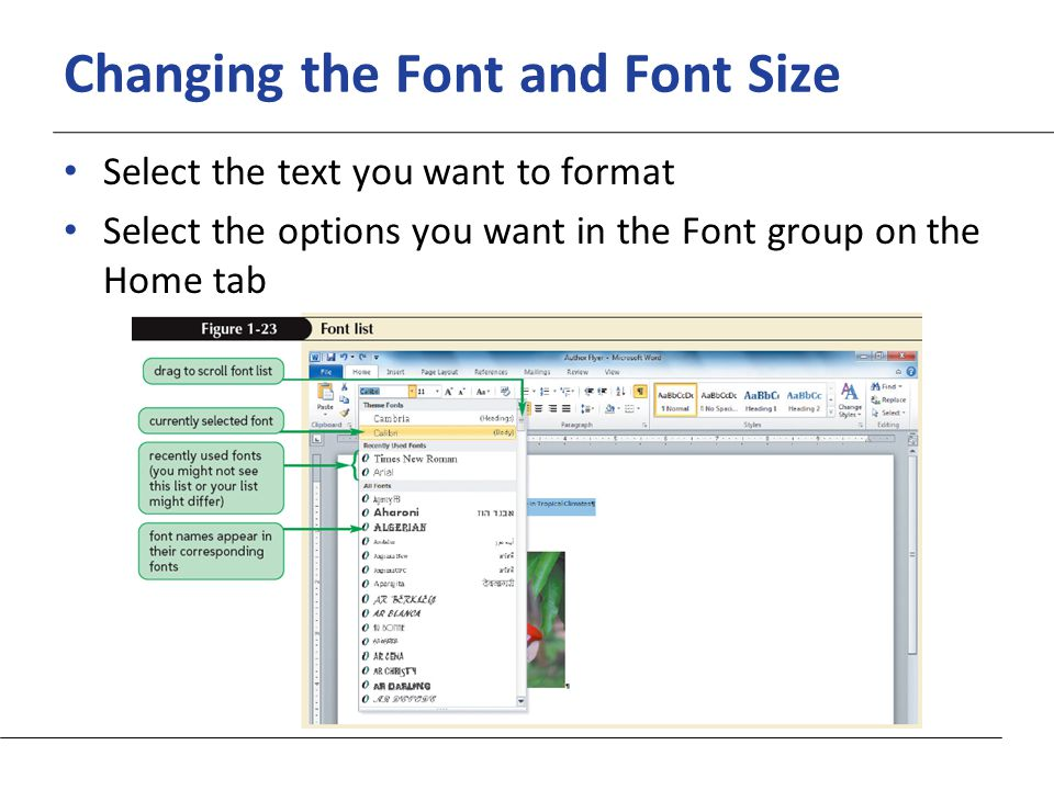 XP Changing the Font and Font Size Select the text you want to format Select the options you want in the Font group on the Home tab
