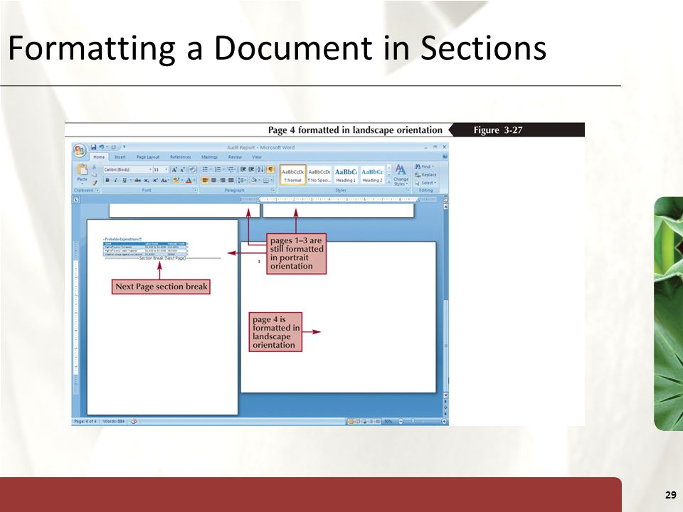 XP 29 Formatting a Document in Sections