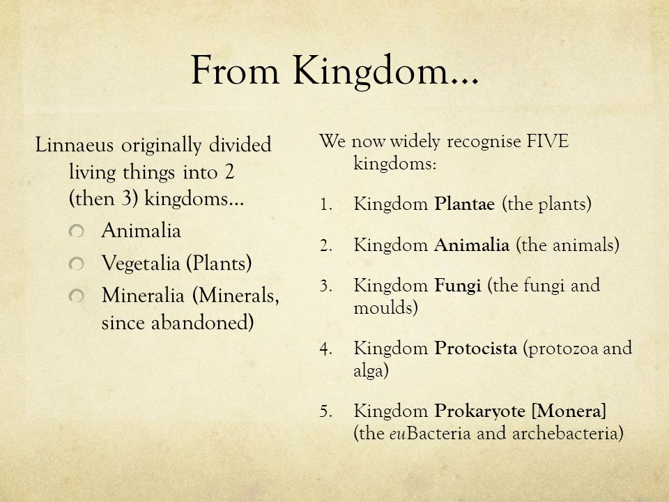 Linnaeus originally divided living things into 2 (then 3) kingdoms… Animalia Vegetalia (Plants) Mineralia (Minerals, since abandoned) We now widely recognise FIVE kingdoms: 1.
