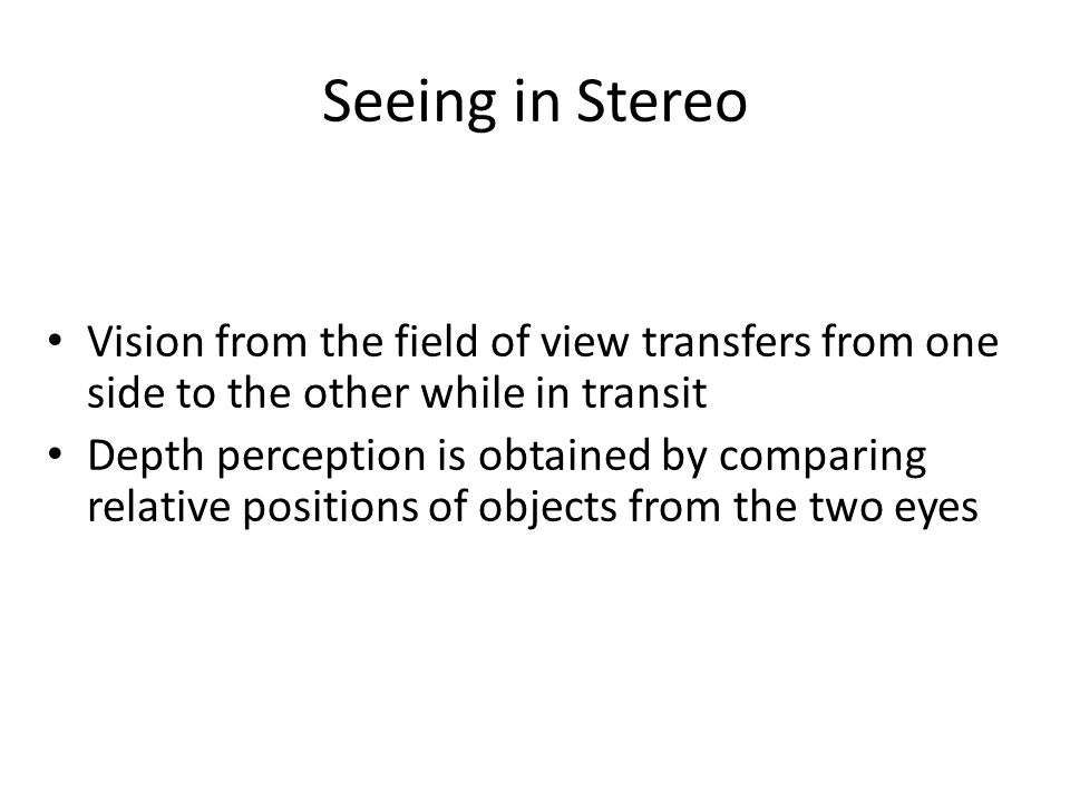 Vision from the field of view transfers from one side to the other while in transit Depth perception is obtained by comparing relative positions of objects from the two eyes Seeing in Stereo