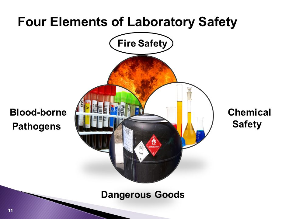 Four Elements of Laboratory Safety 11 Fire Safety Chemical Safety Blood-borne Pathogens Dangerous Goods