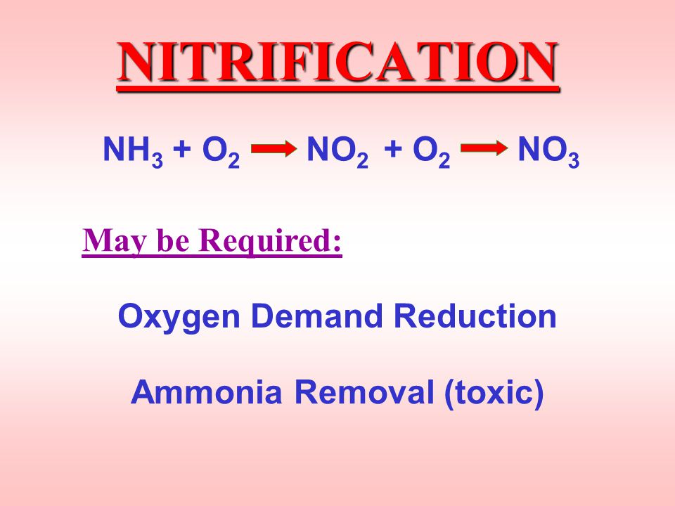 Nitrification BIOLOGICAL Oxidation of Nitrogen From AMMONIA (NH 3 ) to NITRITE ( NO 2 ) to NITRATE (NO 3 ) NH 3 + O 2 NO 2 + O 2 NO 3