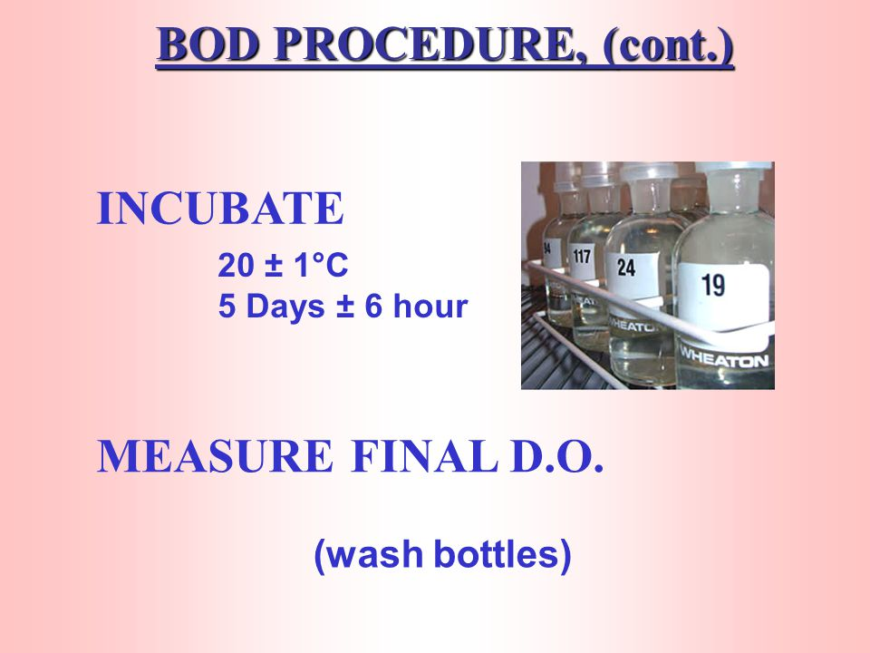BOD PROCEDURE, (cont.) FILL BOTTLE (with dilution water) MEASURE INITIAL D.O.