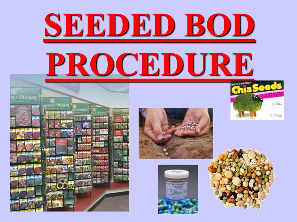 BOD PROCEDURE Source of Seed (bacteria) Settled Sewage Primary Effluent Commercially Available Adapted Seed