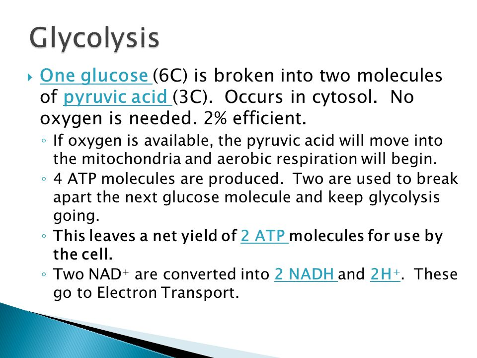  One glucose (6C) is broken into two molecules of pyruvic acid (3C).