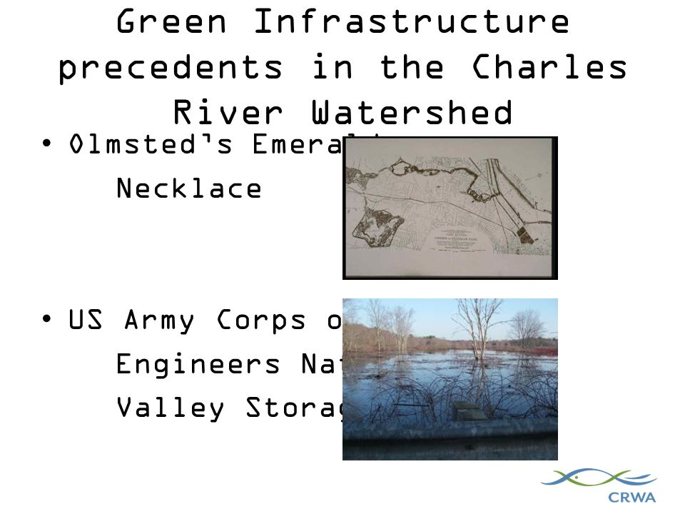 Green Infrastructure precedents in the Charles River Watershed Olmsted's Emerald Necklace US Army Corps of Engineers Natural Valley Storage Area