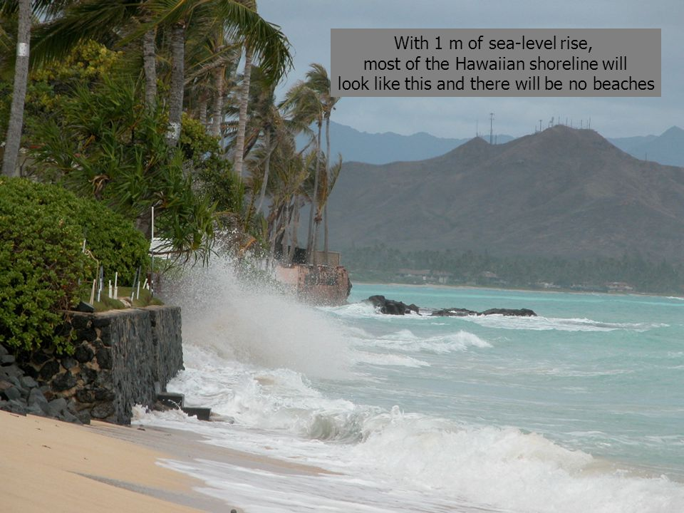 With 1 m of sea-level rise, most of the Hawaiian shoreline will look like this and there will be no beaches