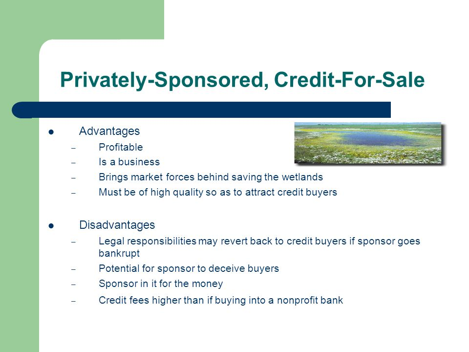 Privately-Sponsored, Credit-For-Sale Advantages – Profitable – Is a business – Brings market forces behind saving the wetlands – Must be of high quality so as to attract credit buyers Disadvantages – Legal responsibilities may revert back to credit buyers if sponsor goes bankrupt – Potential for sponsor to deceive buyers – Sponsor in it for the money – Credit fees higher than if buying into a nonprofit bank