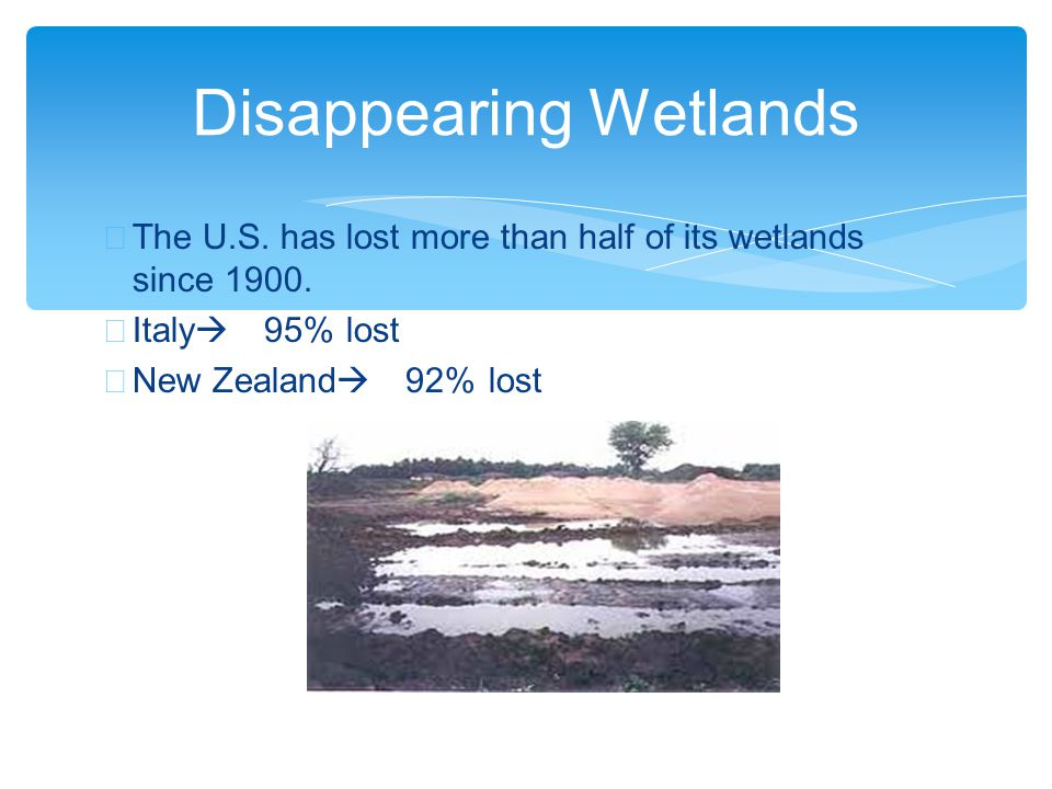 ∗ The U.S. has lost more than half of its wetlands since