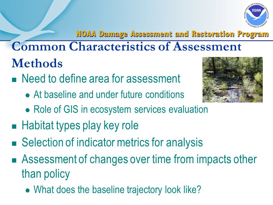 Common Characteristics of Assessment Methods n Need to define area for assessment l At baseline and under future conditions l Role of GIS in ecosystem services evaluation n Habitat types play key role n Selection of indicator metrics for analysis n Assessment of changes over time from impacts other than policy l What does the baseline trajectory look like