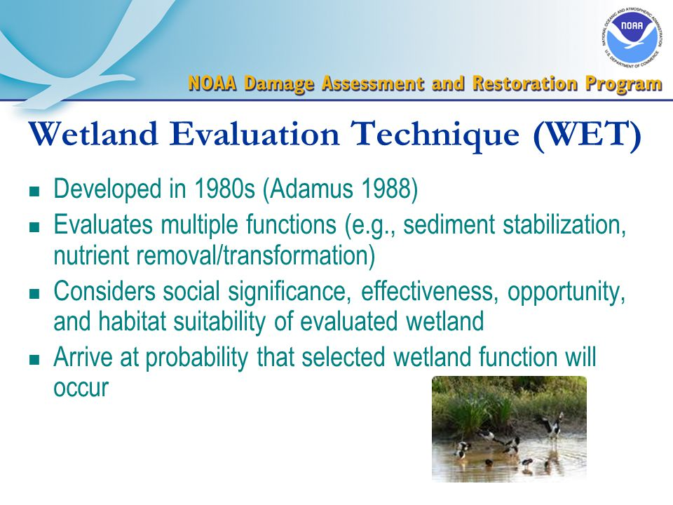 Wetland Evaluation Technique (WET) n Developed in 1980s (Adamus 1988) n Evaluates multiple functions (e.g., sediment stabilization, nutrient removal/transformation) n Considers social significance, effectiveness, opportunity, and habitat suitability of evaluated wetland n Arrive at probability that selected wetland function will occur