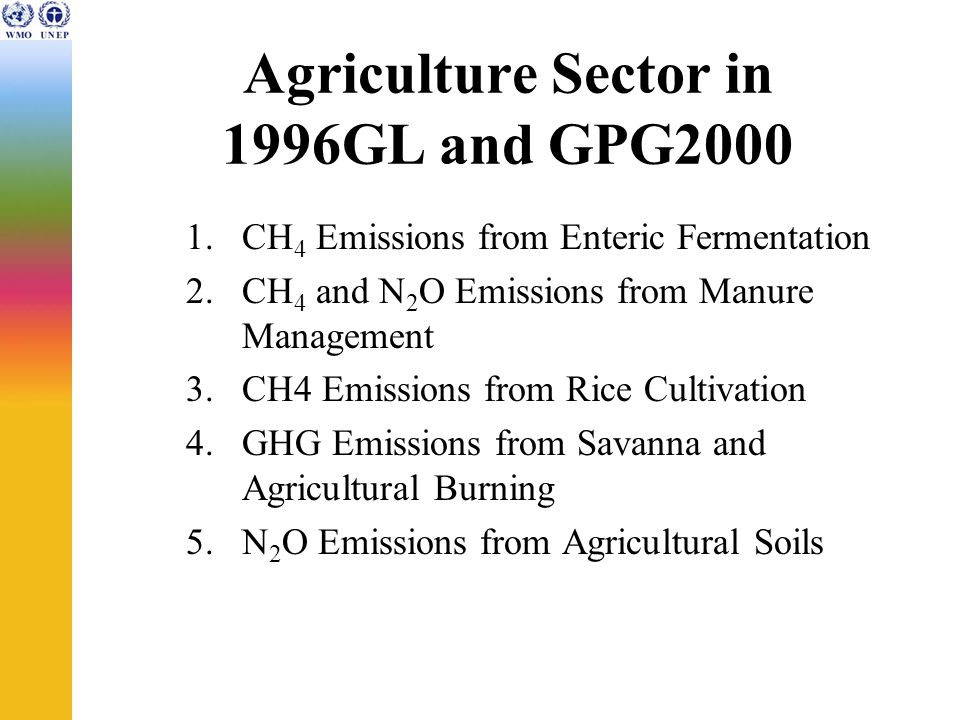 Agriculture Sector in 1996GL and GPG CH 4 Emissions from Enteric Fermentation 2.CH 4 and N 2 O Emissions from Manure Management 3.CH4 Emissions from Rice Cultivation 4.GHG Emissions from Savanna and Agricultural Burning 5.N 2 O Emissions from Agricultural Soils
