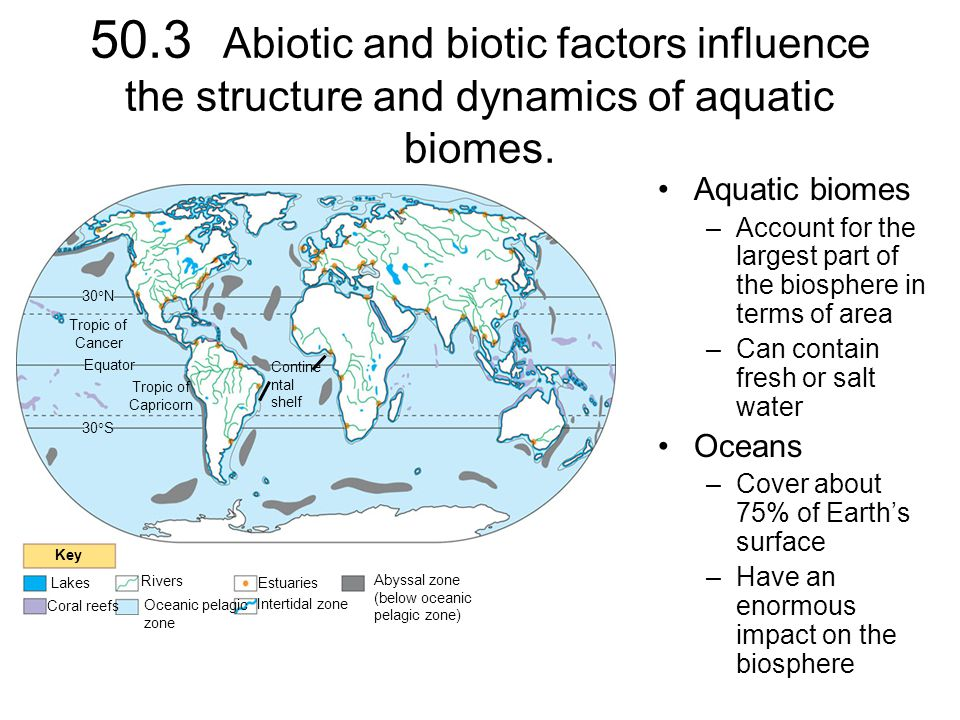 503 Abiotic And Biotic Factors Influence The Structure And Dynamics