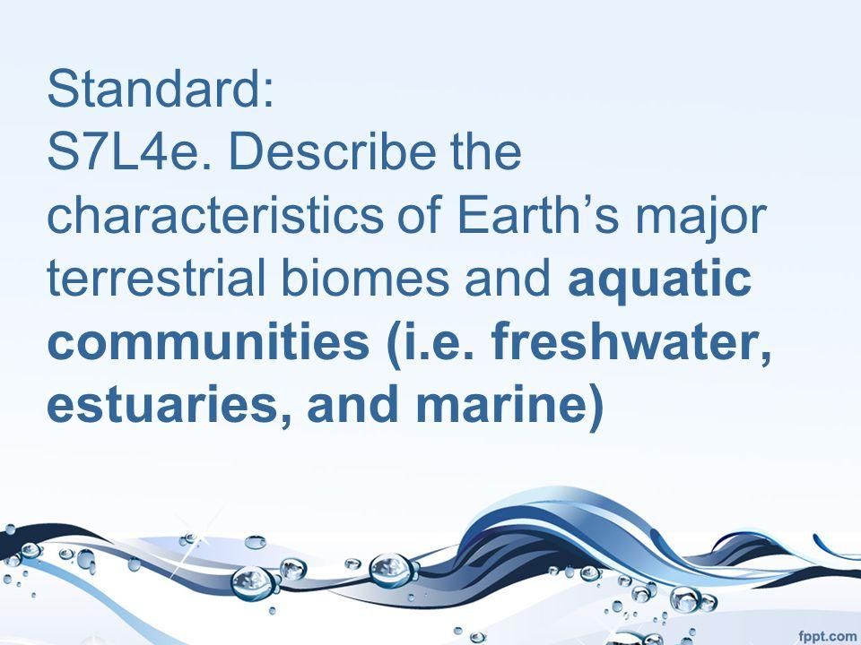 Marine – Benthic Zone Biotic Life Hagfish Tubeworm Clam