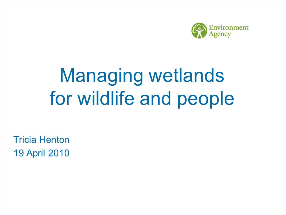 Managing wetlands for wildlife and people Tricia Henton 19 April 2010