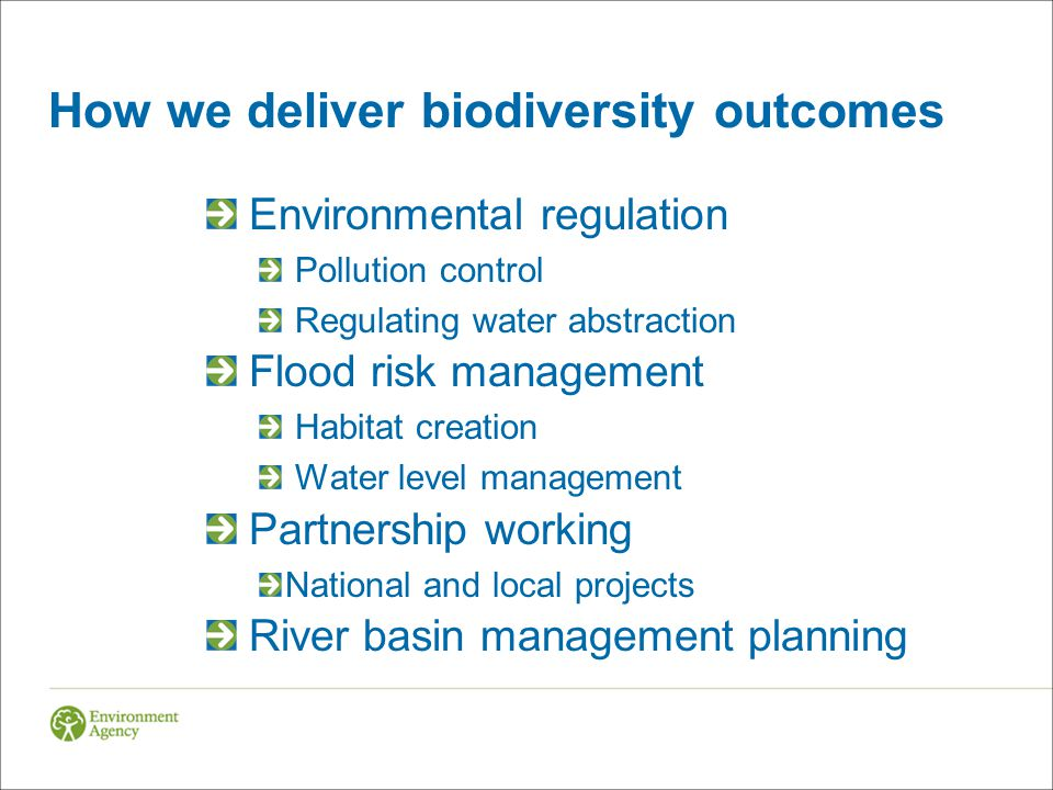 How we deliver biodiversity outcomes Environmental regulation Pollution control Regulating water abstraction Flood risk management Habitat creation Water level management Partnership working National and local projects River basin management planning