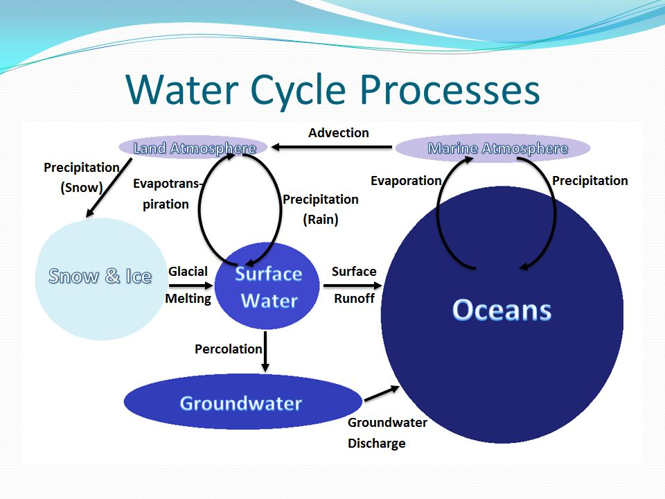 Water Cycle Processes