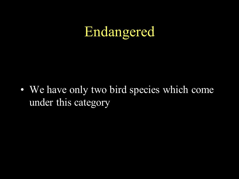Endangered We have only two bird species which come under this category