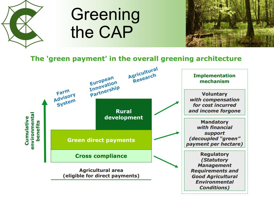 Greening the CAP