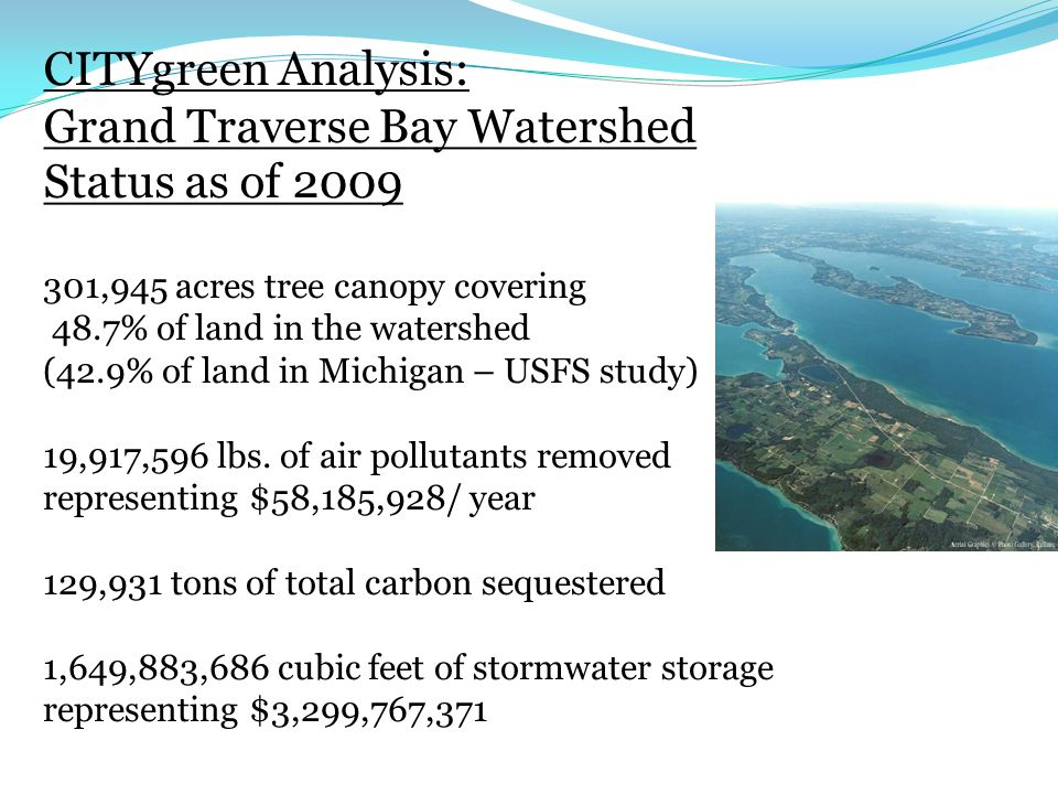 CITYgreen Analysis: Grand Traverse Bay Watershed Status as of ,945 acres tree canopy covering 48.7% of land in the watershed (42.9% of land in Michigan – USFS study) 19,917,596 lbs.
