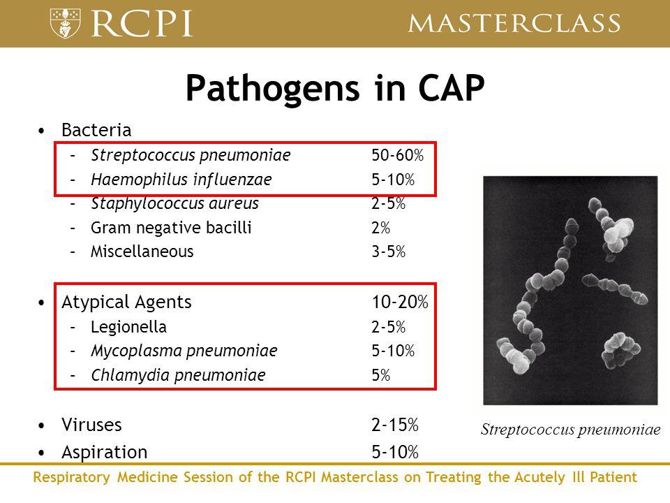 Respiratory Medicine Session of the RCPI Masterclass on Treating the Acutely Ill Patient Pathogens in CAP Bacteria –Streptococcus pneumoniae50-60% –Haemophilus influenzae5-10% –Staphylococcus aureus2-5% –Gram negative bacilli2% –Miscellaneous3-5% Atypical Agents10-20% –Legionella2-5% –Mycoplasma pneumoniae5-10% –Chlamydia pneumoniae5% Viruses2-15% Aspiration5-10% Streptococcus pneumoniae