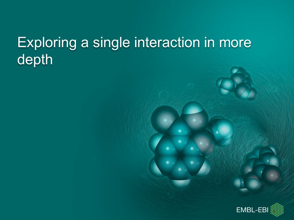 Exploring a single interaction in more depth