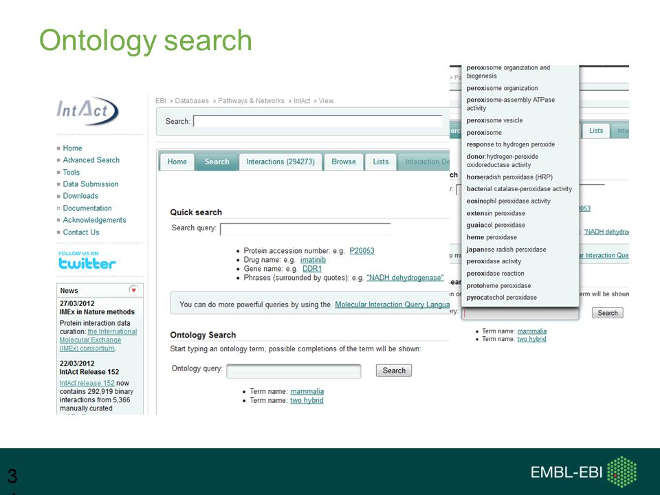 Ontology search 34