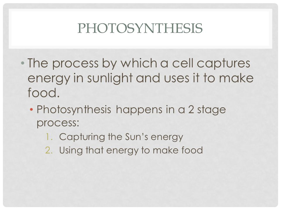 PHOTOSYNTHESIS The process by which a cell captures energy in sunlight and uses it to make food.