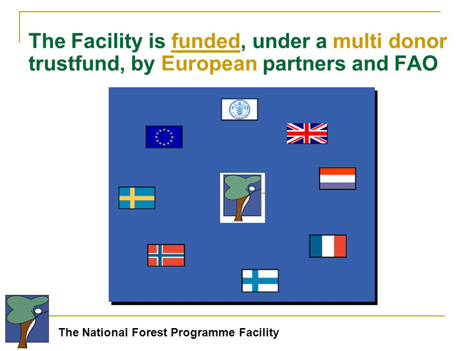 The National Forest Programme Facility The Facility is funded, under a multi donor trustfund, by European partners and FAO