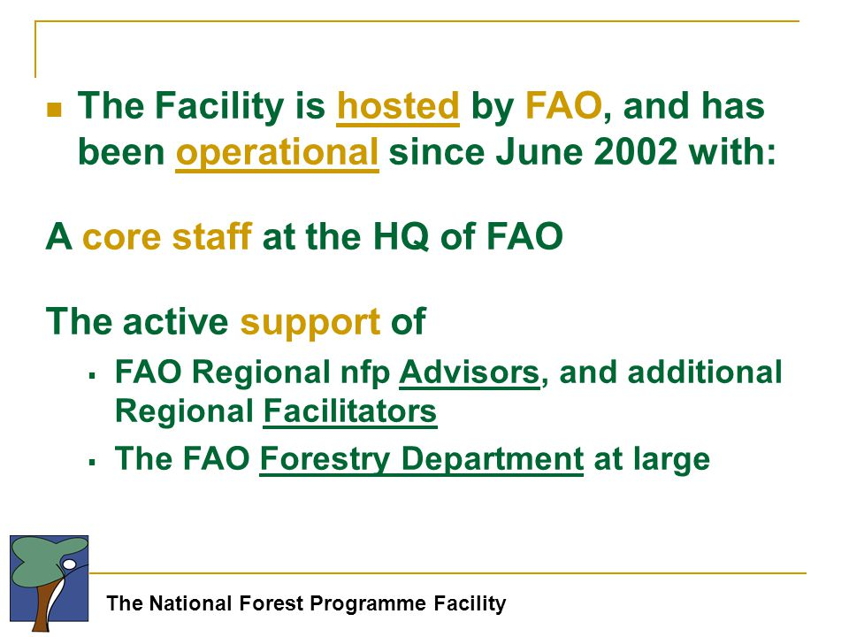 The National Forest Programme Facility The Facility is hosted by FAO, and has been operational since June 2002 with: A core staff at the HQ of FAO The active support of  FAO Regional nfp Advisors, and additional Regional Facilitators  The FAO Forestry Department at large