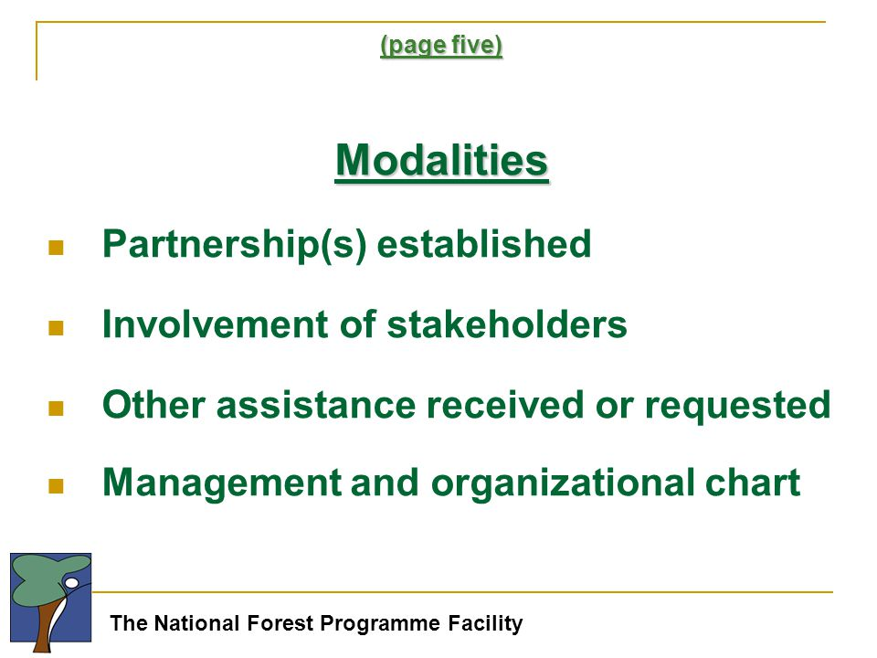 The National Forest Programme Facility (page five) Modalities Partnership(s) established Involvement of stakeholders Other assistance received or requested Management and organizational chart