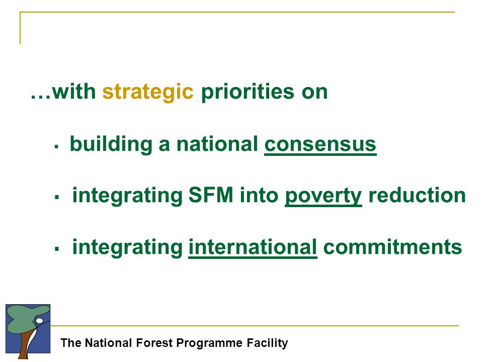The National Forest Programme Facility …with strategic priorities on  building a national consensus  integrating SFM into poverty reduction  integrating international commitments
