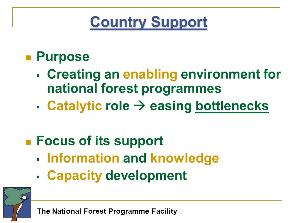 The National Forest Programme Facility Country Support Purpose  Creating an enabling environment for national forest programmes  Catalytic role  easing bottlenecks Focus of its support  Information and knowledge  Capacity development