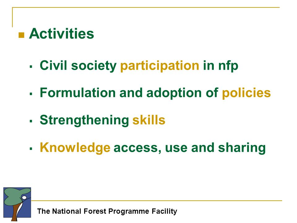 The National Forest Programme Facility Activities  Civil society participation in nfp  Formulation and adoption of policies  Strengthening skills  Knowledge access, use and sharing