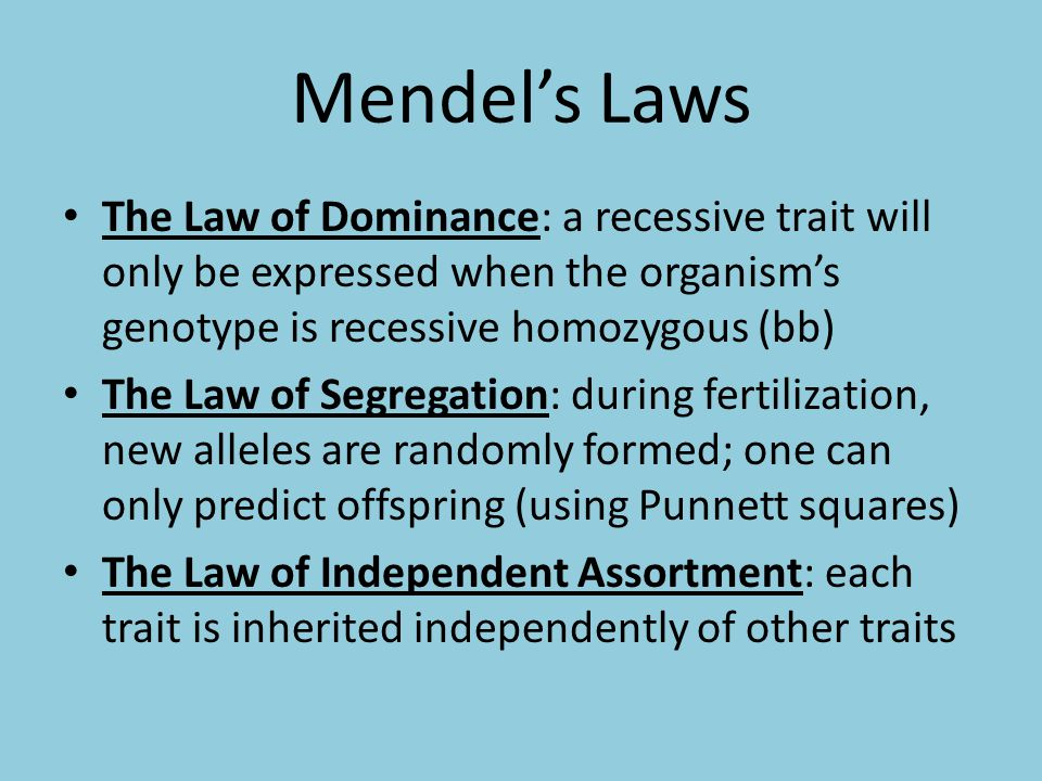 Mendel's Laws The Law of Dominance: a recessive trait will only be expressed when the organism's genotype is recessive homozygous (bb) The Law of Segregation: during fertilization, new alleles are randomly formed; one can only predict offspring (using Punnett squares) The Law of Independent Assortment: each trait is inherited independently of other traits