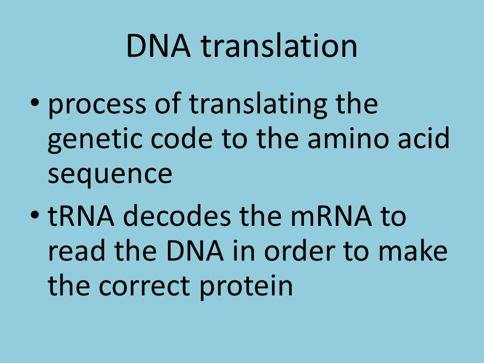 DNA translation process of translating the genetic code to the amino acid sequence tRNA decodes the mRNA to read the DNA in order to make the correct protein