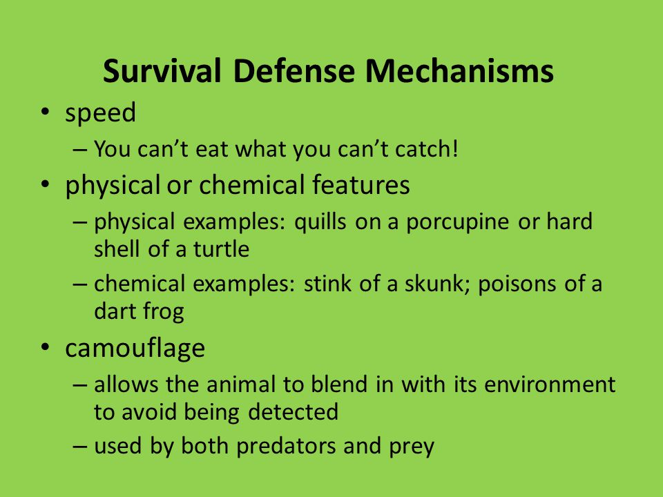 Survival Defense Mechanisms speed – You can't eat what you can't catch.