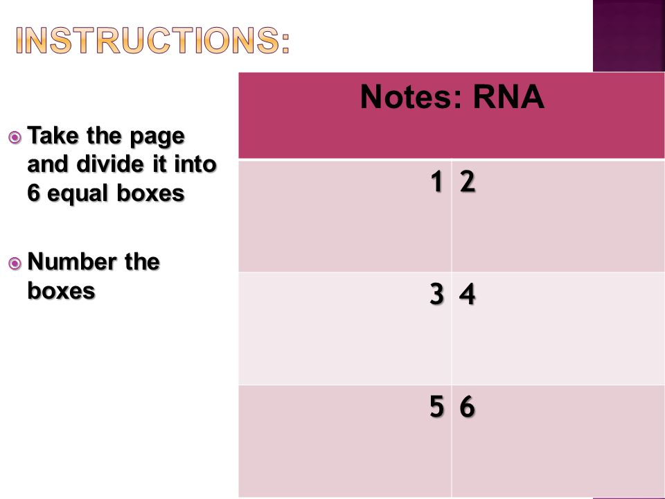  Take the page and divide it into 6 equal boxes  Number the boxes Notes: RNA