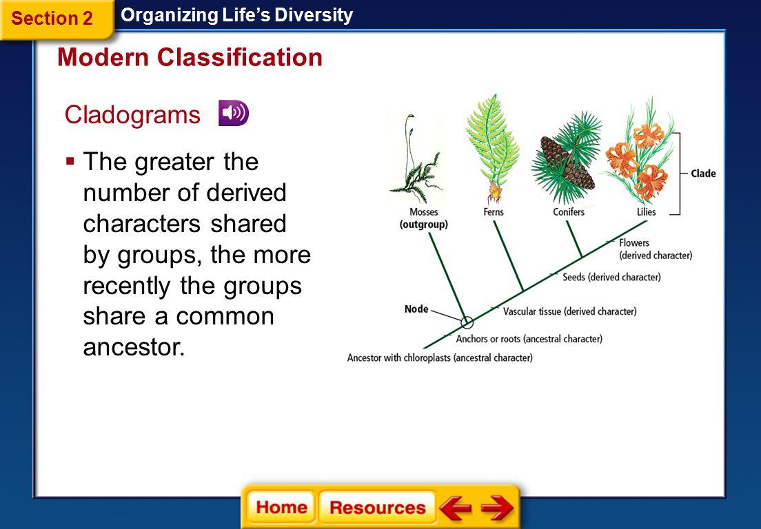 Phylogenetic Reconstruction Organizing Life's Diversity  Cladistics *.