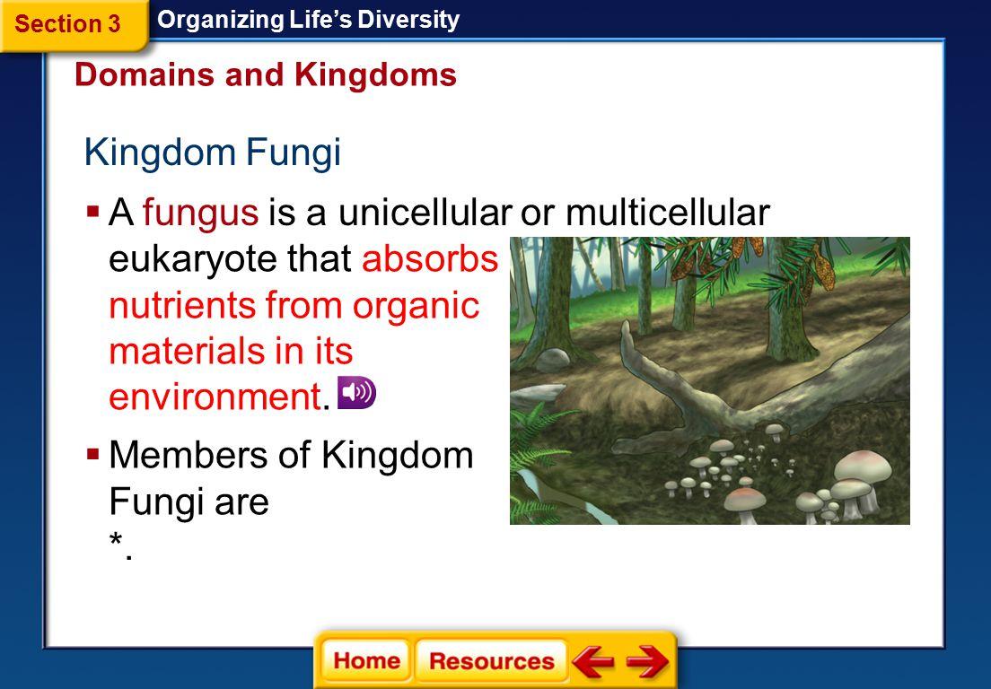 Kingdom Protista Organizing Life's Diversity  Protists are classified into three different groups—plantlike, animal-like, and funguslike.