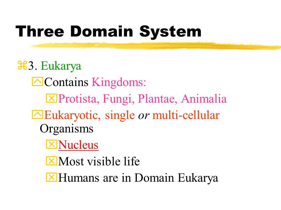 Three Domain System  2.