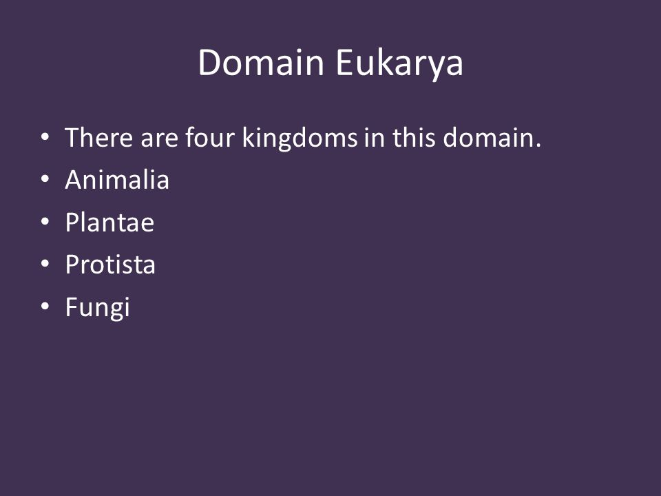 Domain Eukarya There are four kingdoms in this domain. Animalia Plantae Protista Fungi