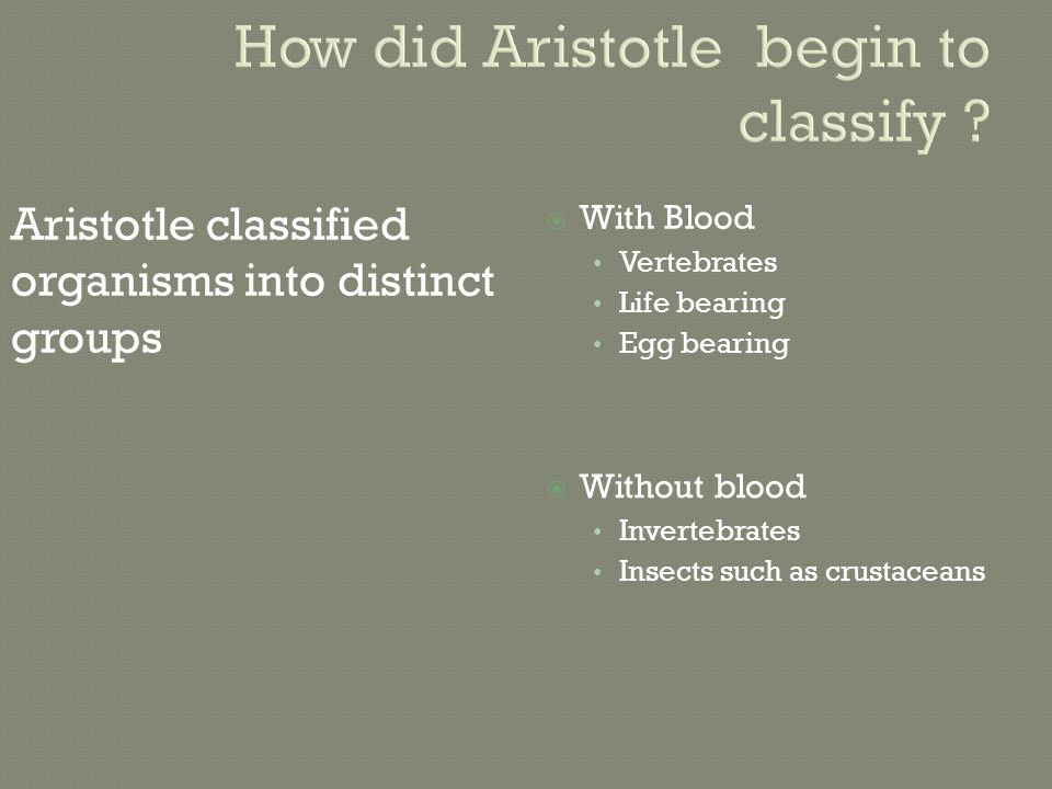 How did Aristotle begin to classify .